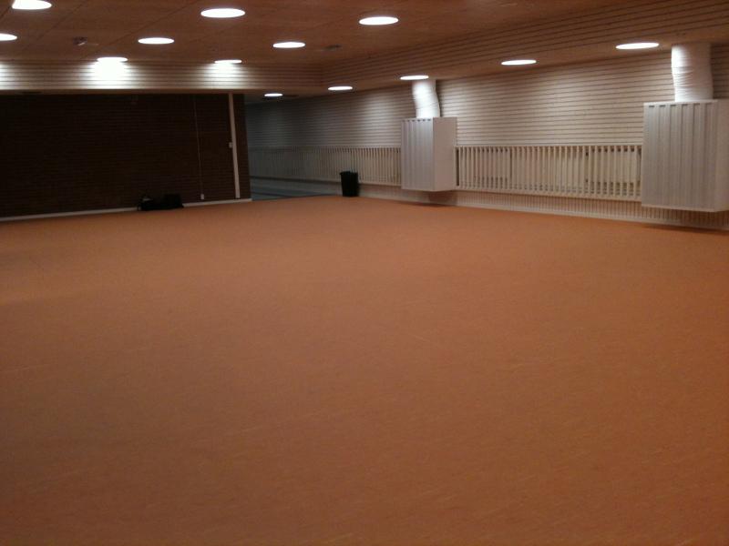 Wushu Sthlm - engelbrektshallen 2 - träningshallen