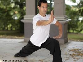 wushusthlm, romain schwab, taolu, kung-fu, träning, kampsport